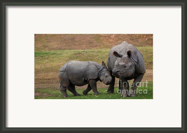 Mili And Sundari  Framed Print By Steve Llamb
