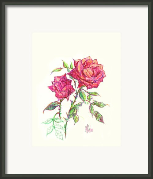 Minature Red Rose Framed Print By Kip Devore
