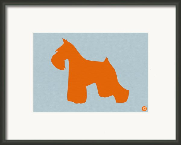 Miniature Schnauzer Orange Framed Print By Naxart Studio