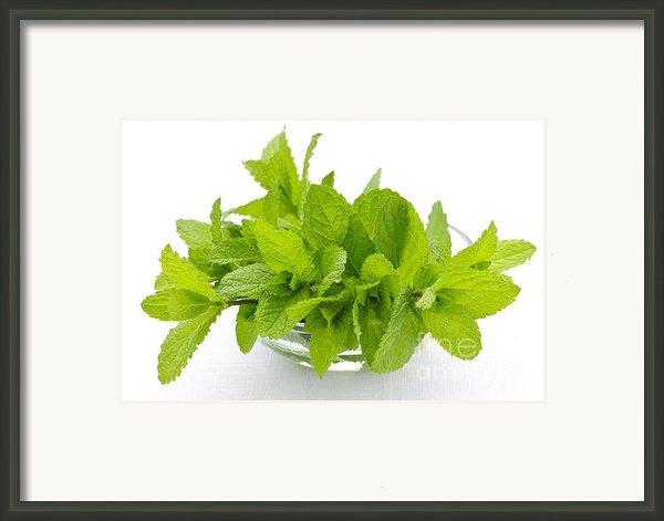 Mint Sprigs In Bowl Framed Print By Elena Elisseeva