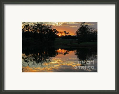 Mirror Image  Framed Print By Jinx Farmer