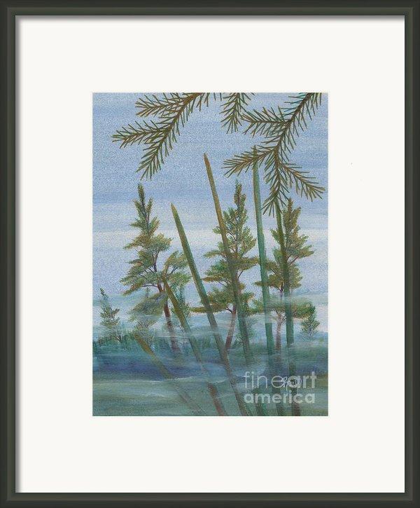 Mist In The Marsh Framed Print By Robert Meszaros