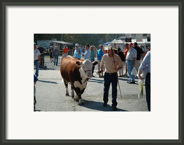 Modern Cowboy Framed Print By Paul Harris