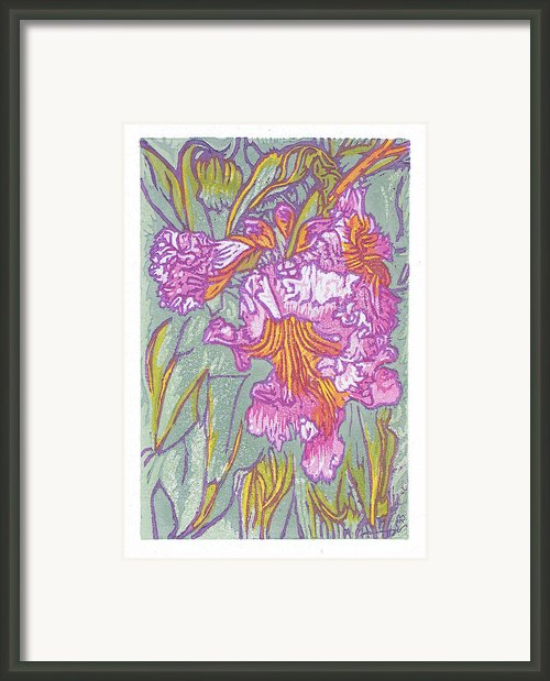 Mojave Willow Framed Print By Maria Arango