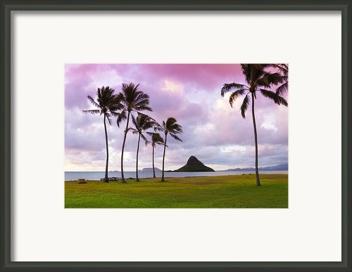 Mokolii Palms Framed Print By Sean Davey