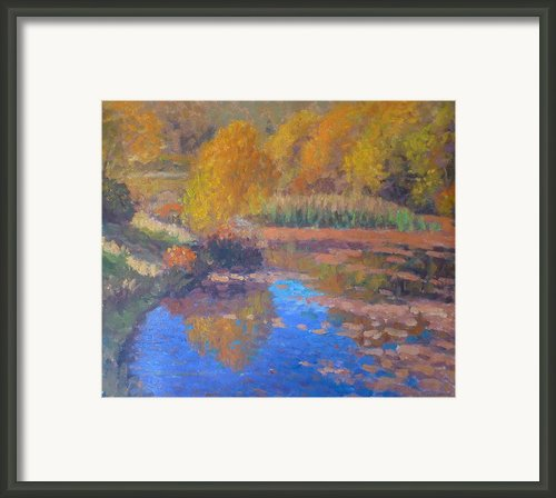 Monets Pond. Whitechapple Framed Print By Terry Perham