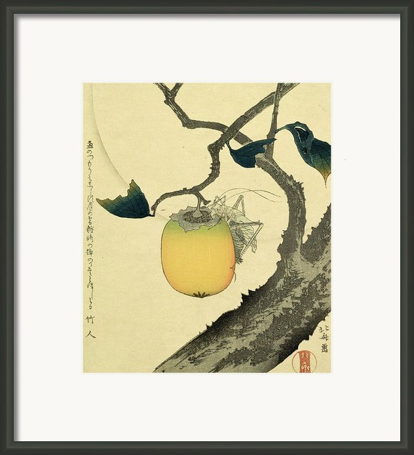 Moon Persimmon And Grasshopper Framed Print By Katsushika Hokusai