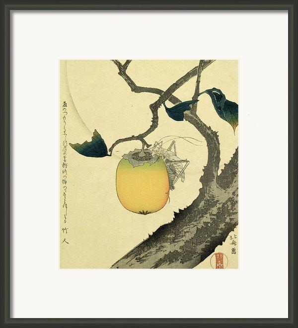 Moon Persimmon And Grasshopper Framed Print By Katsushika Hokusai