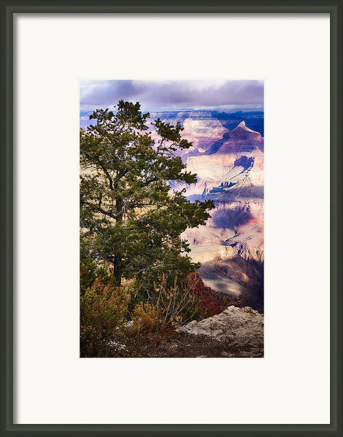 Morning At Grand Canyon Framed Print By Lisa  Spencer