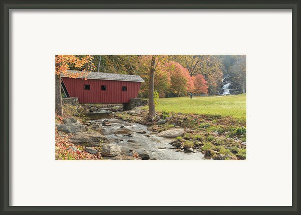 Morning At The Park Framed Print By Bill  Wakeley