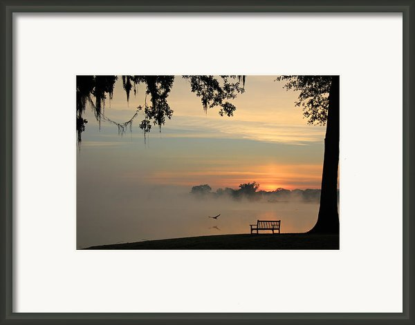 Morning Flight Framed Print By Leslie Kirk