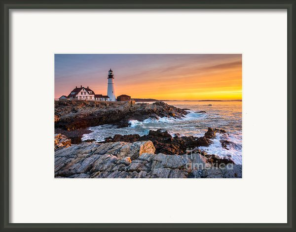 Morning Glory Framed Print By Benjamin Williamson