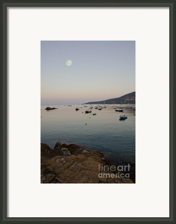 Morning Moon Framed Print By Sophie De Roumanie