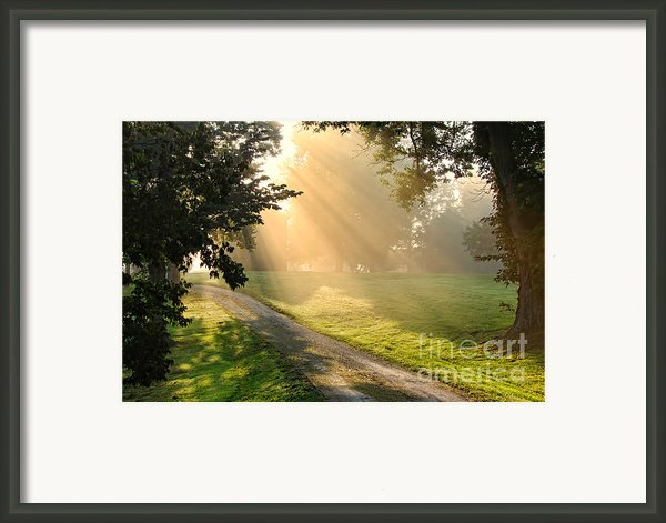 Morning On Country Road Framed Print By Olivier Le Queinec