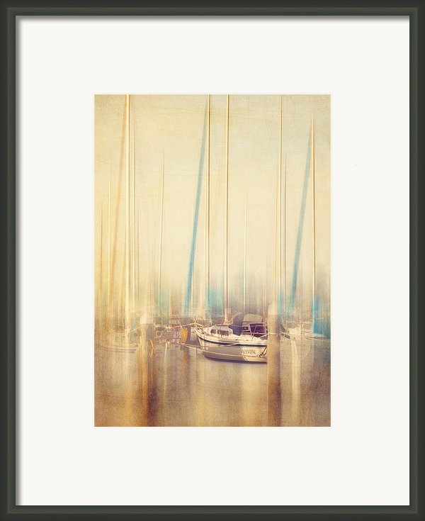 Morning Sail Framed Print By Amy Weiss