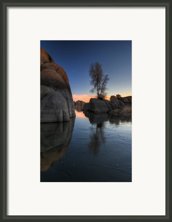 Morning Wood Framed Print By Sean Foster