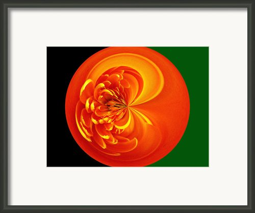 Morphed Art Globe 19 Framed Print By Rhonda Barrett