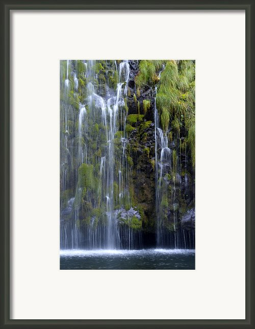 Mossbrae Framed Print By Loree Johnson