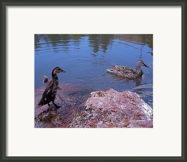 Mother And Child Framed Print By Rona Black