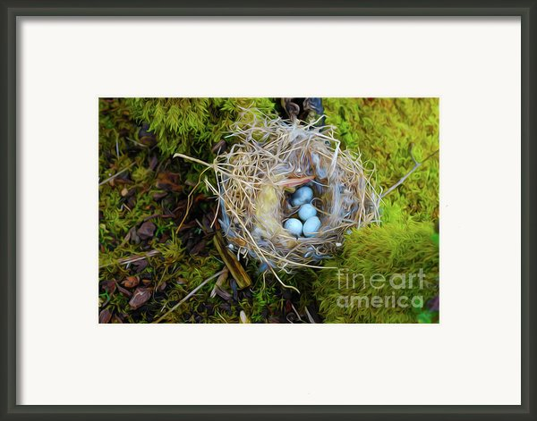 Mother Of Four Framed Print By Laura Brightwood