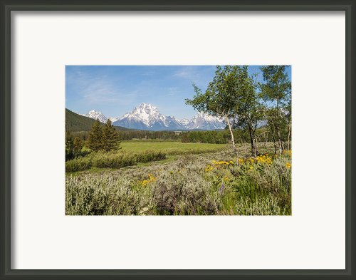 Mount Moran View Framed Print By Brian Harig