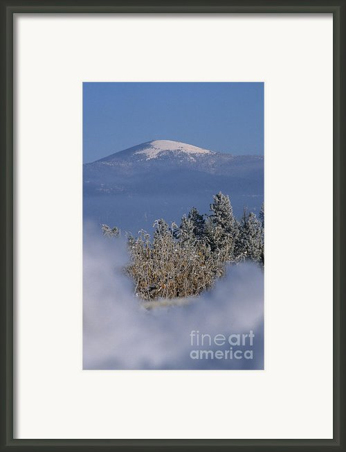 Mount Spokane Framed Print By Sharon Elliott
