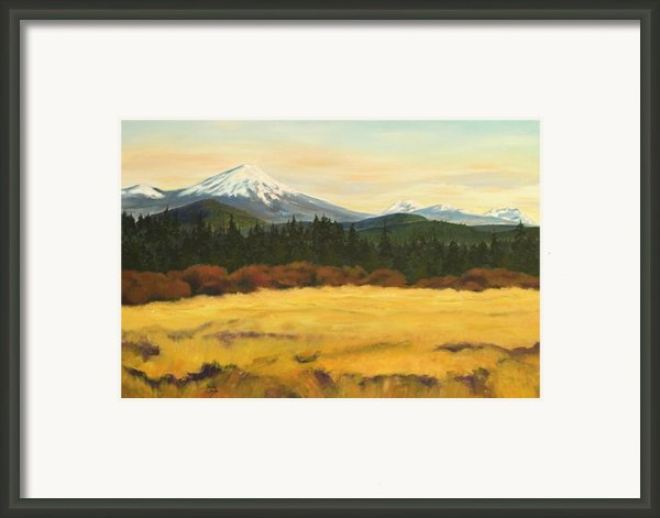 Mt. Bachelor Framed Print By Donna Drake