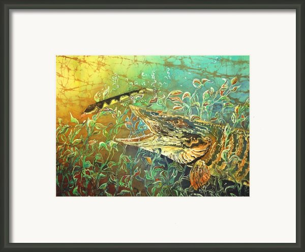 Musky On The Run Framed Print By Sue Duda