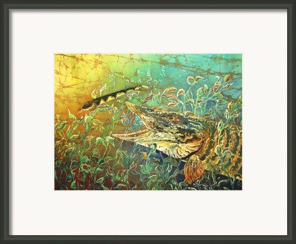 Musky On The Run Framed Print By Sue Duda
