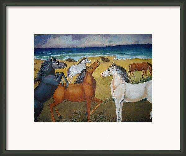 Mustang Mates Framed Print By Prasenjit Dhar