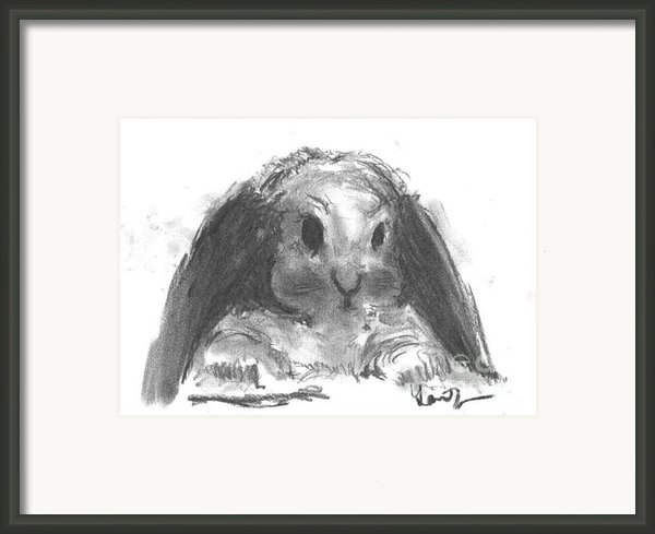 My Baby Bunny Framed Print By Laurie D Lundquist