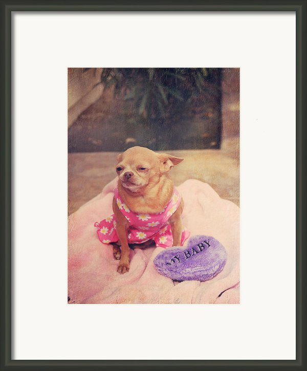 My Baby Framed Print By Laurie Search