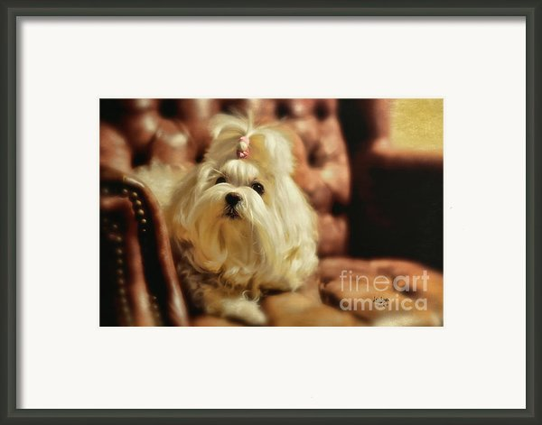My Chair Framed Print By Lois Bryan