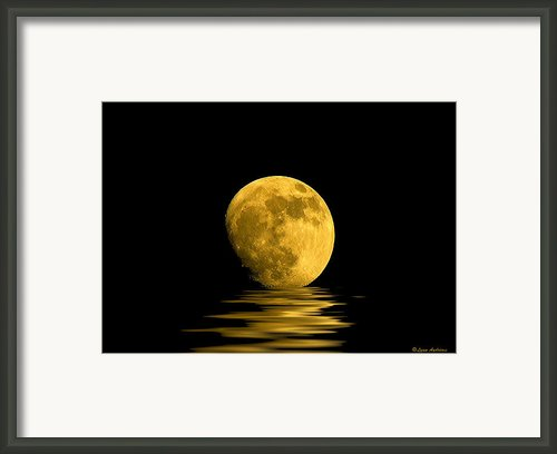 My Harvest Moon Framed Print By Lynn Andrews