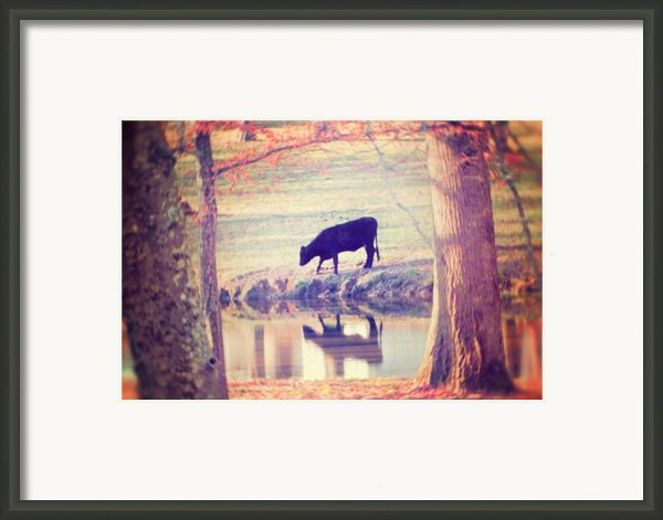 My Own Paradise Framed Print By Amy Tyler