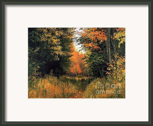 My Secret Autumn Place Framed Print By Michael Swanson