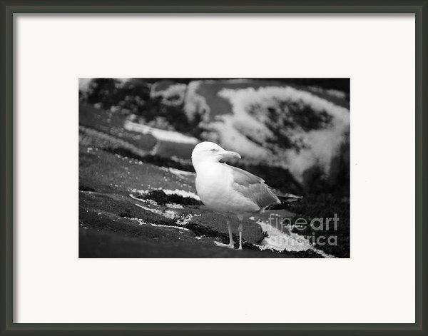 My Turf Framed Print By Luke Moore