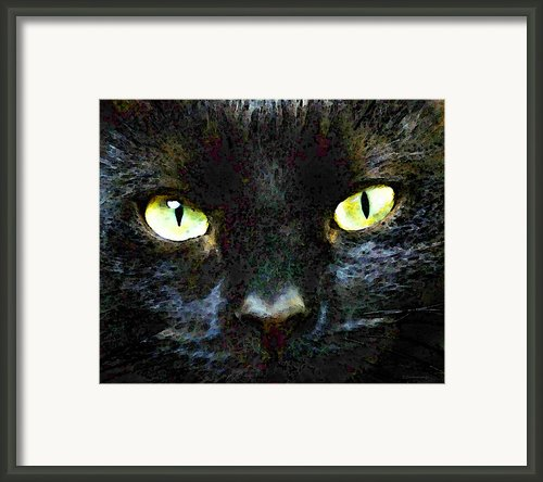 Mystery - Good Fortune Black Cat Art Framed Print By Sharon Cummings