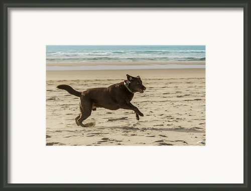 Name Something More Fun Than This Framed Print By Jean Noren