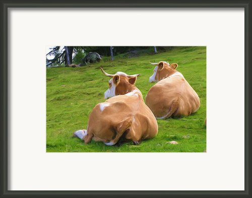 Nap Time Framed Print By Ayse T Werner