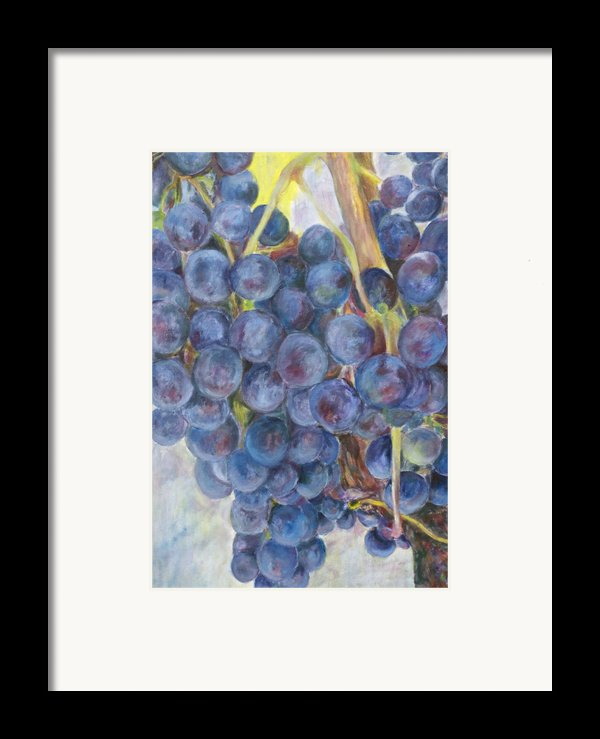 Napa Grapes 1 Framed Print By Nick Vogel