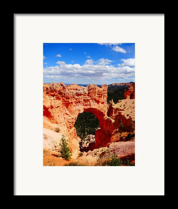 Natural Bridge In Bryce Canyon National Park Framed Print By Dan Sproul