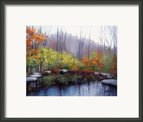 Nature Center Pond At Warner Park In Autumn Framed Print By Janet King