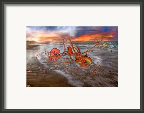 Nature Of The Game Framed Print By Betsy A Cutler East Coast Barrier Islands