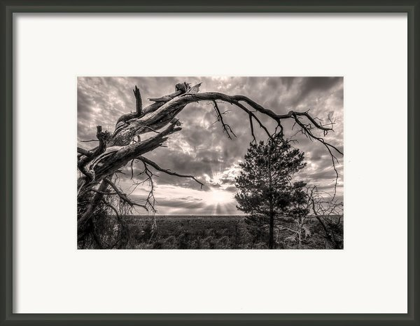 Natures Arch Framed Print By Debra And Dave Vanderlaan