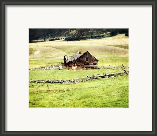 Near Helena Framed Print By Marty Koch