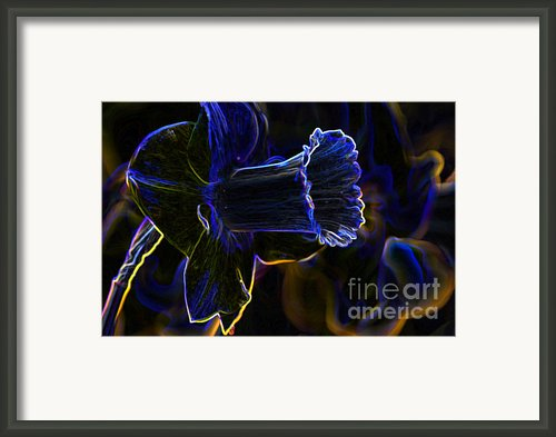 Neon Flowers Framed Print By Charles Dobbs