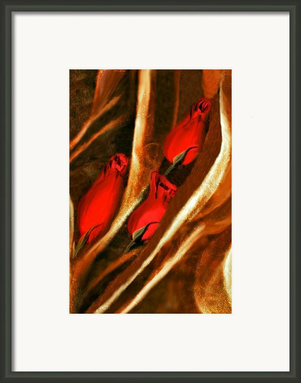 Nestled With Love Framed Print By Paul St George
