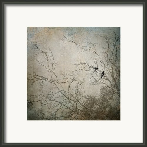 Nevermore... Framed Print By Amy Weiss