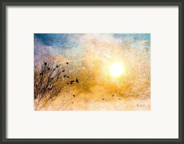 New Day Yesterday Framed Print By Bob Orsillo